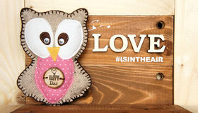 Lovely owl with `love is in the air` Royalty Free Stock Photo