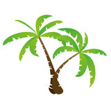 Lovely Palm trees Stock Photography