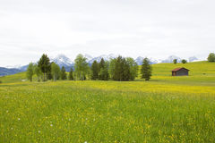 Lovely panorama in the Alps Royalty Free Stock Photo