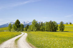 Lovely panorama in the Alps stock photography
