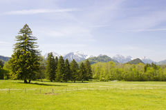 Lovely panorama in the Alps Royalty Free Stock Photography