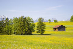 Lovely panorama in the alps stock image