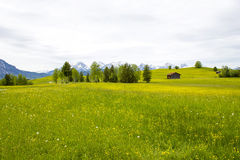 Lovely panorama in the alps royalty free stock images