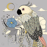 Lovely parrot. Coloring page in exquisite style Royalty Free Stock Images