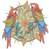 Lovely parrot coloring page Royalty Free Stock Images
