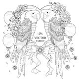 Lovely parrot coloring page Stock Photography