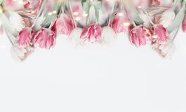 Lovely pastel color tulips border on white background with bokeh. Springtime flowers, top view. Spring nature and holidays concept. Copy space for your design royalty free stock images