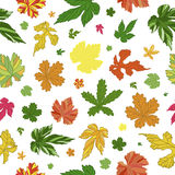Lovely pattern of leaves. Endless background. 