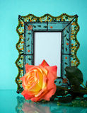 Lovely photo frame and elegant rose on blue Royalty Free Stock Images