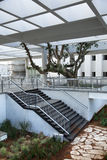 Urban Patio with Staircase. A lovely piece of public urban architecture. A patio featuring a pergola, staircase and tree. Shot in Tel-Aviv, Israel Stock Photos