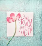 Lovely pink flowers for my dear mom on  turquoise shabby chic background, top view. Mothers Day. Concept Stock Photography