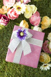 Lovely pink gift box Royalty Free Stock Image