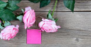 Lovely pink roses and gift tag for Mothers Day holiday on rustic. Pink roses with gift tag on weathered wooden boards Stock Images