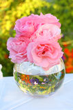 Lovely pink roses in a vase Stock Images