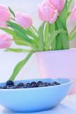 Lovely pink tulips and blueberries Royalty Free Stock Image