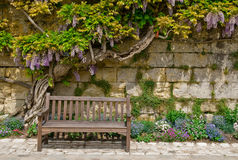A Lovely Place to Rest. A welcoming bench invites a rest with wiseria and blooming spring flowers in the Loire Valley Royalty Free Stock Photo