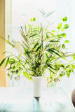 Lovely plants bunch in vase on table at window background. Florist arrangements with variety of green tropical plants.Home decor Royalty Free Stock Images