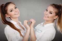 Lovely playful sisters women portrait. Stock Images