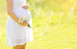 Lovely pregnant woman with flowers in summer sunny day Stock Photography