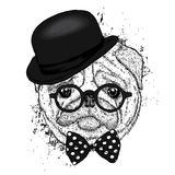 Lovely pug hat and with a tie. Funny dog. Puppy. Vector illustration for a postcard or a poster. Print on clothes Royalty Free Stock Photo