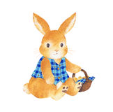 Lovely rabbit Royalty Free Stock Photo