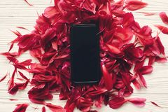 Lovely red peonies petals bunch and phone with empty screen on r royalty free stock photo