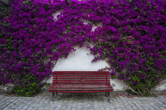 Lovely and relaxing red bench between purple flowers Royalty Free Stock Images
