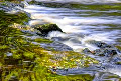 Lovely river flow and stones. Some leaves fallen into the river. Lovely reflections of the trees Royalty Free Stock Photo