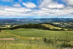 A view over the hills and vineyards of Sonoma County, California. The lovely rolling hills and vineyards in the countryside of Sonoma County, California Royalty Free Stock Image