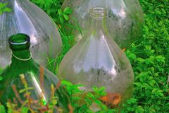 Lovely round glass bottles in a botanical garden Stock Image