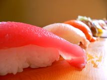 Lovely row of sushi. A lovely row of sushi, fresh and tasty royalty free stock images