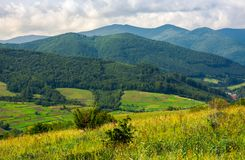 Lovely rural scenery in mountains. Agricultural fields on hills. beautiful landscape royalty free stock photography
