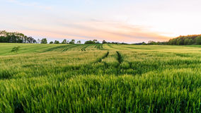 Lovely Rural Sunset Landscape Stock Image