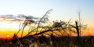 Lovely Rural Sunset Landscape Royalty Free Stock Images