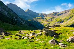Lovely scenery of Transfagarasan road in valley. Rocks on grassy meadow and slopes. half of the valley in shade of mountain ridge royalty free stock image