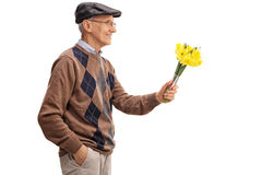 Lovely senior gentleman holding tulips Stock Photography