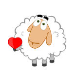 Lovely sheep Stock Images