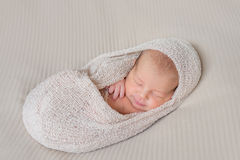 Lovely sleeping infant wrapped in gray warm diaper Royalty Free Stock Photos