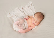 Lovely sleeping infant wrapped in gray warm diaper. Lovely smiling sleeping infant wrapped in gray warm diaper Royalty Free Stock Photography