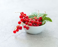 Rustic bowl full of red currant berries. Lovely small rustic bowl full of red currant berries, some green leaves attached stock photos