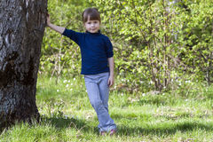 Lovely smiling little girl standing near big tree on green grass Royalty Free Stock Photo