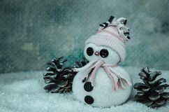 Cute snowman figure and pine cone Stock Image