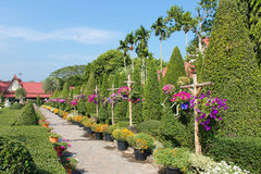 Lovely stay,flower Garden , Thailand Stock Photography