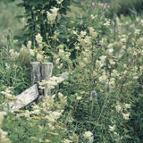 Lovely Summer landscape with split toned filter for Instagram lo Stock Photos