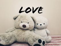 Cute teddy bear for valentines royalty free stock images