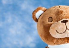 Lovely Teddy Bear Royalty Free Stock Photos