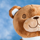 Lovely Teddy Bear Royalty Free Stock Photography