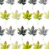 Lovely tender gentle graphic artistic abstract bright floral herbal autumn Stock Photography