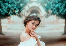 Lovely tender girl with perfect skin and dark magnificent eyes, wonderful work of hairdresser and gathered brown hair royalty free stock photo