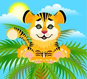 Lovely tiger Royalty Free Stock Image